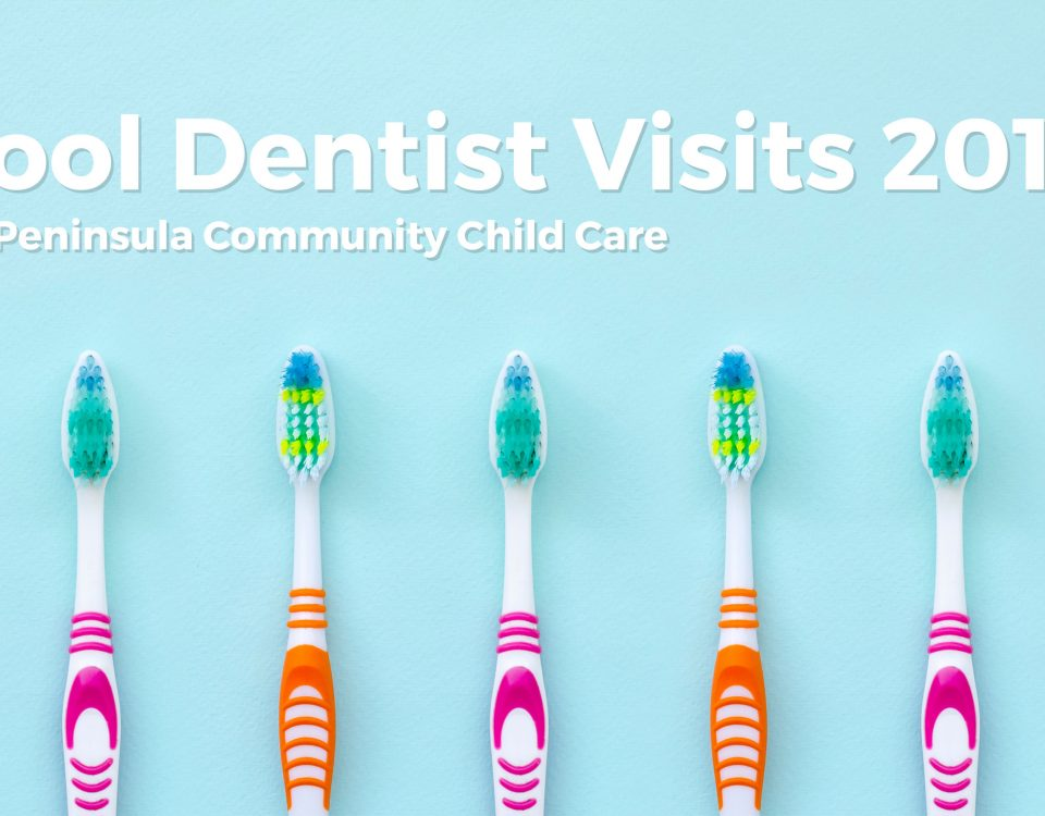 School Dentist Visits 2019